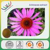 Native American traditonal herb cold medince cheap price high quaity natural echinacea purpurea plant extract