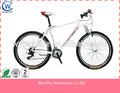 Desempenho dos miúdos bicicleta/novo estilo de bicicletas de bambu com roda de treinamento e suporte traseiro/steel frame híbrido bik