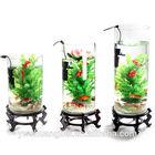 Beautiful aquaponics fish tank