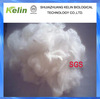 Padded fabric material for use polyester staple fiber