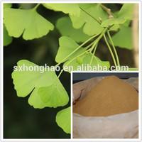 supply free sample 100% pure and natural ginkgo biloba extract