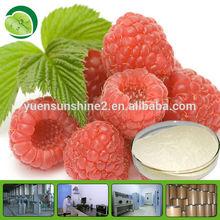 raspberry ketone 100% natural fruit plant extract powder palm leaf Raspberry Fruit powder