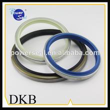 Hydraulic cylinder Wiper Seal DKB Dust Seal