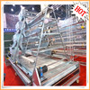 Battery layer chicken cage for poultry house