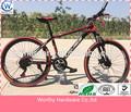 tianjin fahrrad das Fahrrad Deutsch fahrrad marke