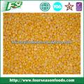 Yeni ürün mısır çekirdekleri, altın tedarikçisi