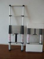 telescopic ladder(HY-1553)