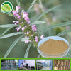free sample 100% natural herbal plant extract Motherwort Herb Extract powder