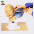 Senior lavagem de ouvido modelo de formação bix-lv40
