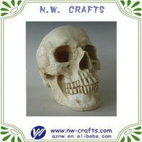 Resin natural bones arts and crafts