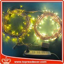 Unique led twinkle light string