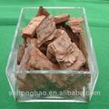 Venda quente casca de pinus extrato 95% proanthocyandins