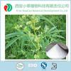 High Quality standard ferulic Acid extract powder supplier