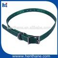 2014 vendita calda speciale design collare di cane con nome per cane di piccola taglia