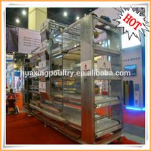 Design automatic layer quail/chicken farm poultry equipment