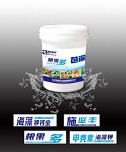 Chitosan seaweed functional liquid fertilizer