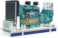Diesel gas&( gnc/gnl) conjunto generador de energía 120-200kw