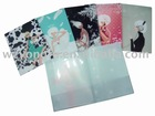pp file folder (New Style)