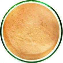 Garcinia Extract Powder