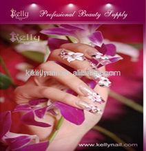 clavo hermoso arte del cartel del salón de uñas del cartel