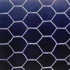 Galvanized Wire netting (Modelling mesh-02)