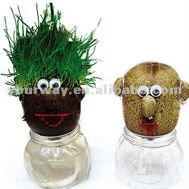 Grass head,Grass toy,Growing grass head