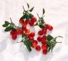 Artificial Plastic Fruit Cherry Toys