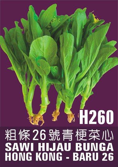 Leaf Vegetable seeds H260 Sawi Hijau 26