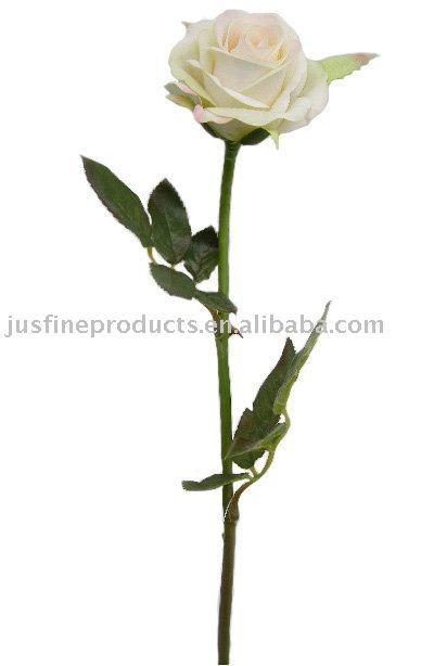 Небольшой цветок