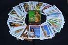 America sexy bikini girl poker cards size customized promotional playing cards