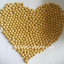 2011 new crop soya beans