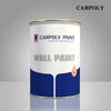 Carpoly Paint