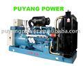 Sistema de generador, el motor diesel