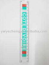 20cm colorful ruler