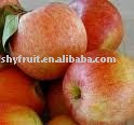 supply red fuji apples