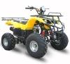 EPA ATV ATA250-D YELLOW