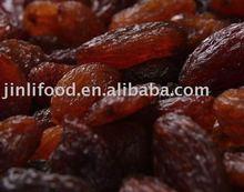 seedless brown raisin fruit dried