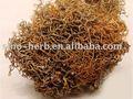 هيمالايا الأعشاب الصينية العضوية الأحمر سنو