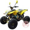 Powerful 250cc Quads Bike with Water Cooling Engine WZAT2506