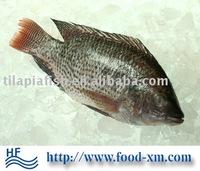 frozen fish river bream