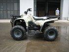 Cougar 250