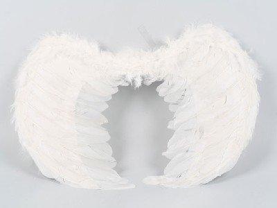 Asa do anjo-Outros brinquedos e hobbies-ID do produto:374005869 ...