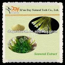 Fucoxanthine in Seaweed Extract