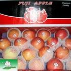 RED FUJI,bulk vegetable plants,succulent fresh fruit apple