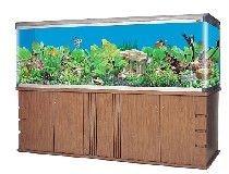 2014 BOYU curved aquarium FH3000
