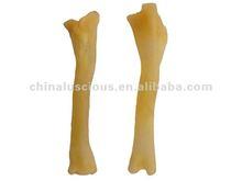 Bone of Lamb Leg food product