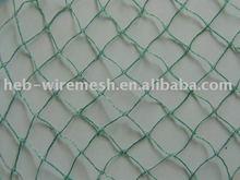Anti Bird Protection Net Hebei Factory