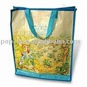 2013 nes design pp tote bag recycle