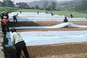 Tessuto non tessuto di per l'agricoltura e il giardino-Tessuto impermeabile-Id prodotto ...