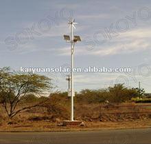 wind and solar hybrid street lights with 60W Bridgelux LED &300W wind turbine